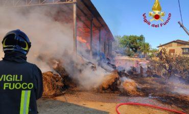 Incendio in un'azienda agricola, i pompieri intervengono per domare le fiamme