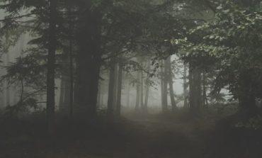 In cerca di castagne, 70 enne si smarrisce al Colle della Trinità