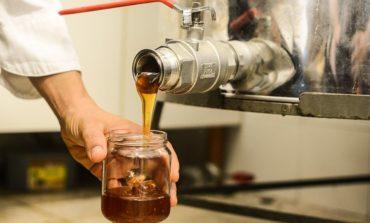 Un miele corcianese è tra i più pregiati d'Italia