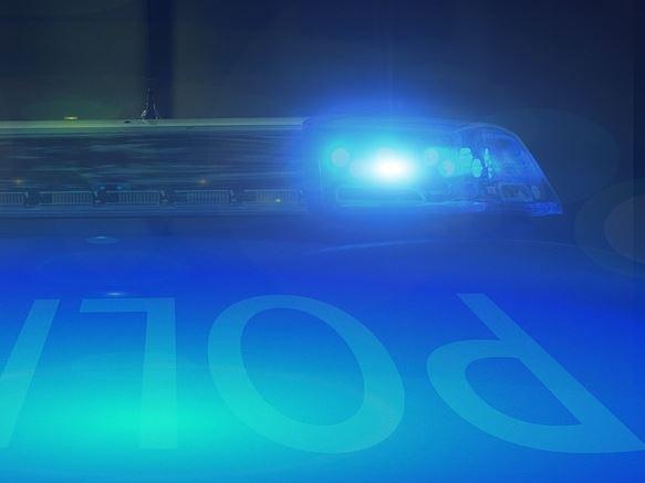 carabinieri furti ladri polizia cronaca ellera-chiugiana