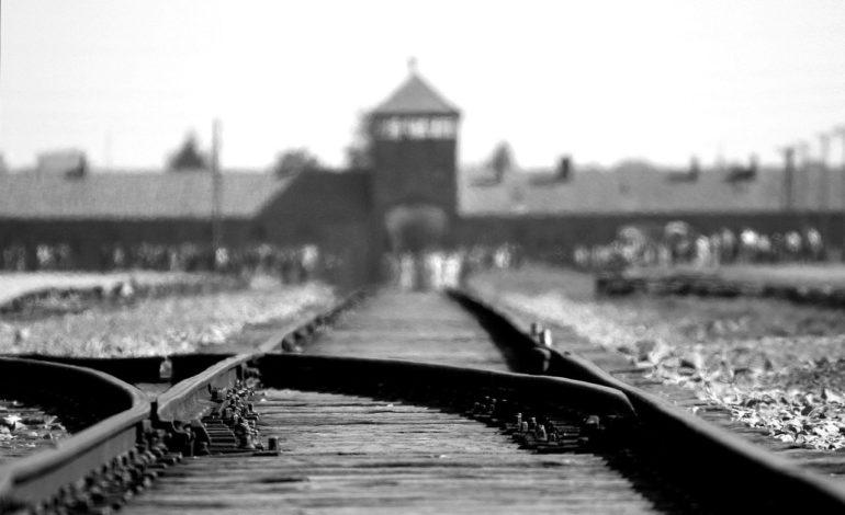 giorno della memoria olocausto shoah glocal