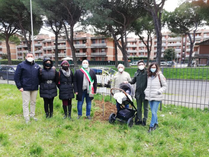 mandorlo parco delle fate primavera san mariano solidarietà cronaca san-mariano