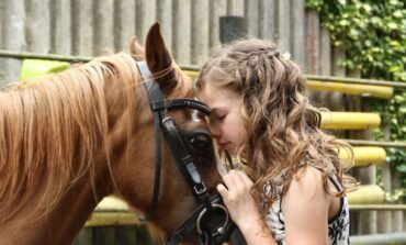Pony nelle scuole umbre grazie al progetto 'Voce del verbo equimparare'