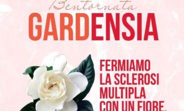Sclerosi multipla: Assoutenti Umbria scende in piazza insieme ad Aism