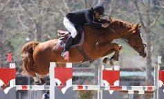 Equitazione, la pandemia non ha fermato l'attività agonistica della Scuderia Valmarino